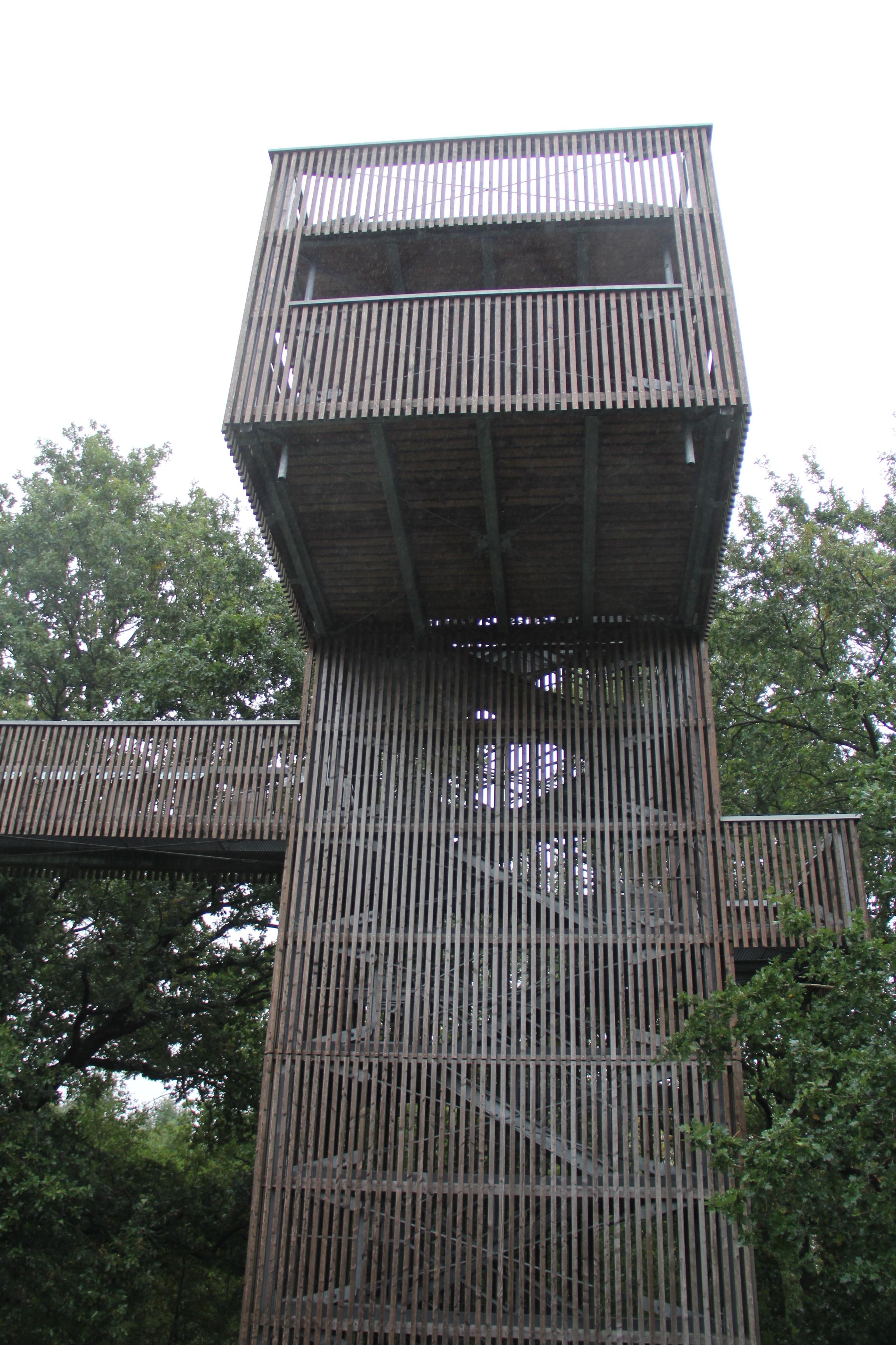 Der Baumkronenturm
